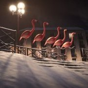 Flamants/Ski
